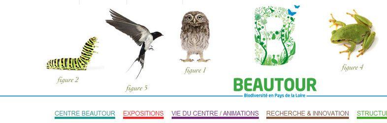 Beautour Website